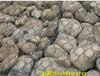 镀锌PVC格宾石龙网护坡护岸