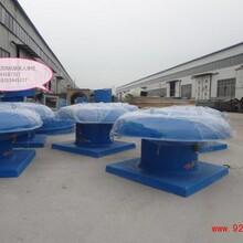 玻璃鋼屋頂風機-選德州金光風機制造有限公司圖片