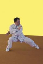 驻马店哪有教太极拳的太极服表演服-太极拳培训-陈式太极拳教程