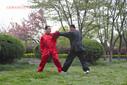 太极拳|驻马店太极拳培训|泌阳太极|太极拳培训|传统杨氏大架太极拳随想图片