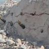 石料劈裂机
