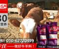 北京犊牛饲料厂家犊牛饲料