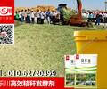 玉米秸秆发酵剂/粗纤维分解剂