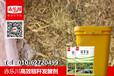 玉米秸秆青储饲料草料专用发酵剂