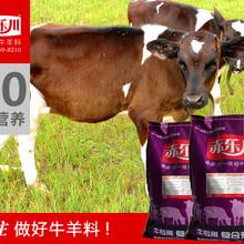小牛增肥补钙预混料小牛营养饲料