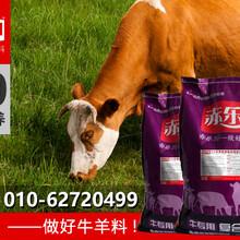 肉牛增肥预混料肉牛预混料