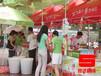 宜昌荆州荆门武汉演出策划公司提供苏宁、国美、大中家电促销路演活动策划案