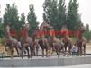 内蒙古包头市龙艺雕塑防腐木工程有限工司