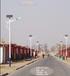 黑龙江双鸭山集贤县8米太阳能LED路灯新农村路灯