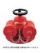 消防器材SQS/SQA消防水泵结合器批发消防器材直销