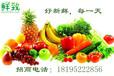 银川水果批发公司新鲜致达鲜致