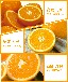 供应水果橘子批发零售鲜致新鲜致达