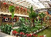 郑州生态餐厅、生态温室酒店建设