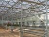 遵义连体玻璃温室设计大棚设计建造