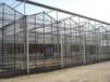 玻璃连栋温室大棚建设安装自动化智能温室大棚设计承建