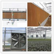 温室降温通风系统-湿帘风机