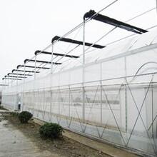 温室大棚温室降温设备-大棚外遮阳系统