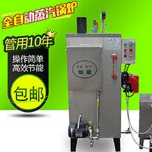 旭恩高科技30KG燃油蒸汽锅炉图片