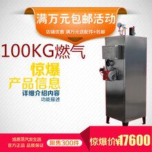 旭恩立式80KG燃气蒸汽锅炉燃气锅炉图片
