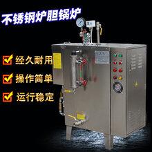 旭恩48KW蒸汽发生器全自动不锈钢蒸汽锅炉图片
