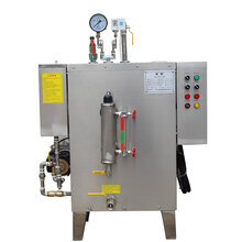 小型全自动蒸汽发生器节能环保蒸汽锅炉图片