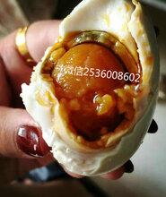 正宗红树林海鸭蛋_广西海鸭蛋批发_天津海鸭蛋代理图片