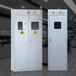 济南气瓶柜山东实验室气瓶柜