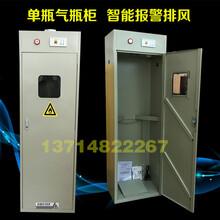 单瓶气瓶柜智能报警排风气瓶柜实验室工厂通用气瓶柜图片