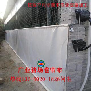 现代养殖场设备厂家上饶专业定制保温猪场卷帘布牛场卷帘布图片6