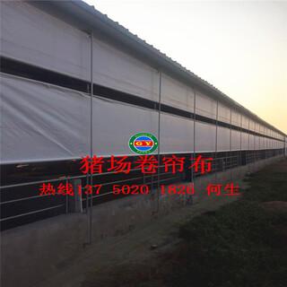 现代养殖场设备厂家上饶专业定制保温猪场卷帘布牛场卷帘布图片5