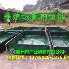 河南定做帆布水池,帆布储水池加工,养殖鱼池价格批发厂家图片