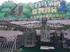 地产百鸟展览鹦鹉表演出租