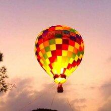热气球展览异型热气球出租图片