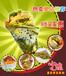 南京流动小吃车加盟午娘果蔬营养煎饼火爆加盟中零加盟费送设备小本创业