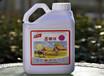 柑橘高钙叶面肥柑橘高钙叶面肥批发柑橘高钙叶面肥厂家