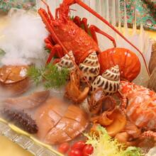 酒店饭店饮食店菜单食谱菜品拍摄设计制作美食摄影摄像
