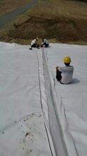 山東無紡土工布復合土工布專業生產規格尺寸定做圖片