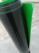 浙江HDPE土工膜图片