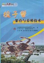 梭子蟹养殖技术大全视频教程资料海螃蟹怎么土池育苗青蟹养殖技术视频图片
