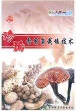 蘑菇種植技術大全視頻教程資料牛糞種植蘑菇食用菌栽培技術視頻大全圖片