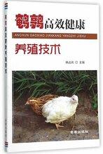鹌鹑养殖技术视频教程大全资料产蛋鹌鹑的养殖方法饲养鹌鹑养殖视频教程图片