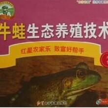 牛蛙養殖技術大全視頻教程牛蛙怎么養殖快美國牛蛙養殖技術資料圖片