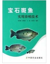 石斑魚養殖技術大全視頻教程寶石斑魚怎么育苗淡水石斑魚養殖技術視頻圖片