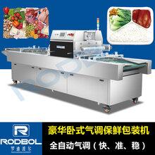 北京RDW650熟食气调保鲜包装机生产线图片