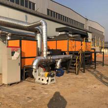 定制催化燃燒設備廠家直銷圖片