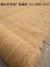 山西环保草毯植被毯麻椰固土毯生态毯边坡修复绿化护坡