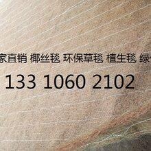 植物纤维毯环保草毯厂家抗冲生物毯椰丝毯膨润土防水毯厂家