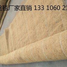 椰丝毯环保草毯椰丝毯公路绿化植物纤维毯生态毯厂家