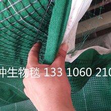 椰丝毯环保草毯抗冲生物毯生态毯植被毯麻椰固土毯厂家直销
