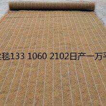 山体复緑椰丝毯环保草毯cf网抗冲生物毯膨润土防水毯